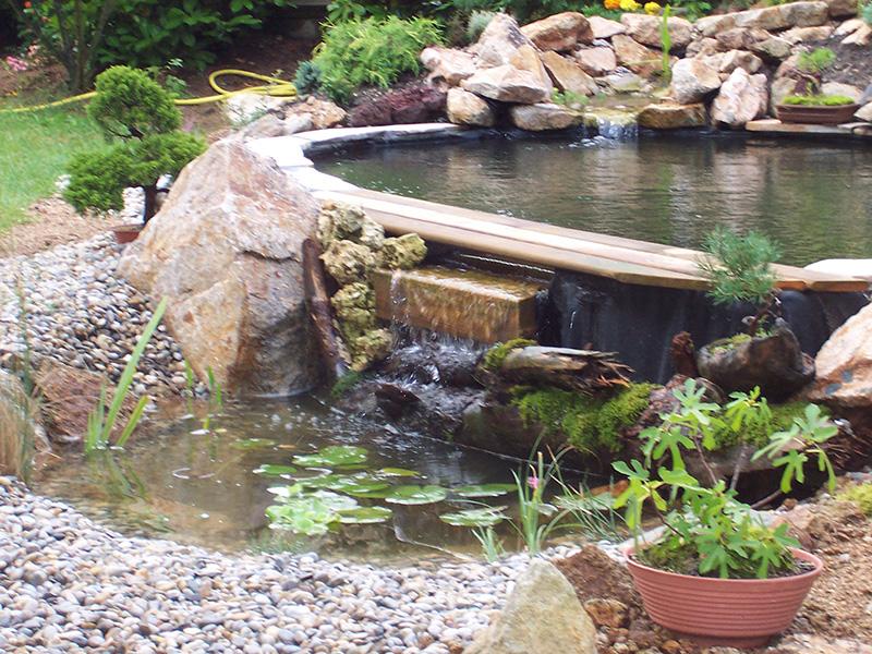 Bassin aquatique en haute loire 43 for Bassin aquatique jardin
