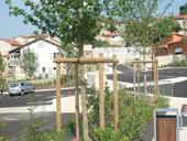 Création de parc et jardin sur la commune du Puy-en-Velay