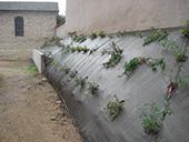 Plantation en pentes