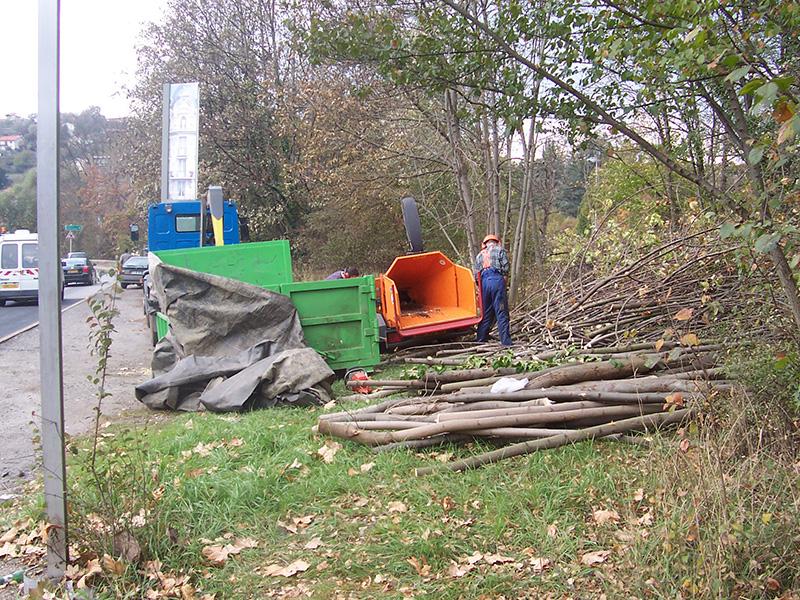 Elagage puy en velay entretien arbre 43 for Prix de l elagage d un arbre