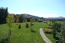 Entretien de parc et jardins
